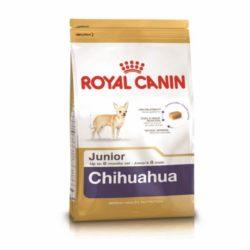 cihuahua-juinior-royal-canin-500gr