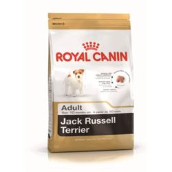 jack-russel-adult-royal-canin