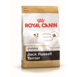 jack-russel-junior-royal-canin