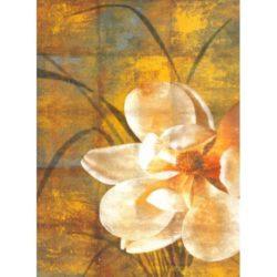 stampa-tela-fiore-petali-canvas