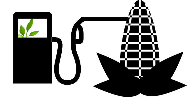 Bioetanolo:cosa è e come si ottiene