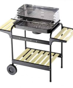 Barbecue a Carbonella Eco 60